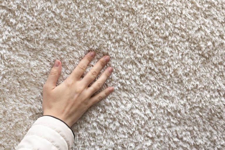 Buyer choosing a new carpet in a store.